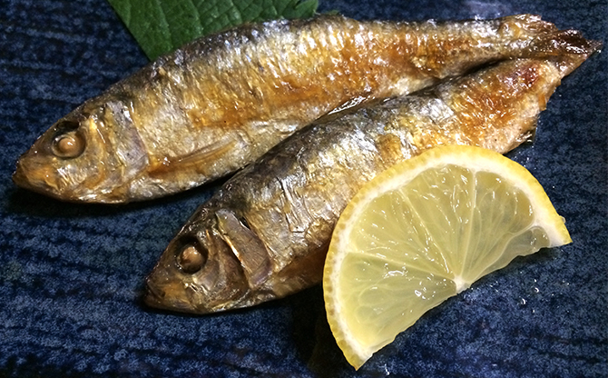 岡山市街地の良心酒場でバラエティ豊かな地魚を